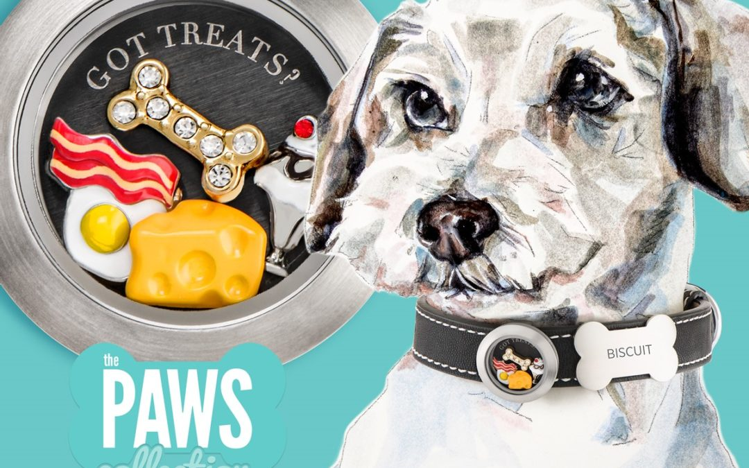 New Paws Collection Now Available!