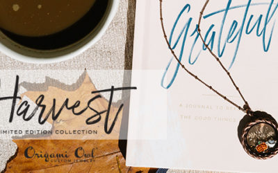New Limited Edition Harvest Collection is Here