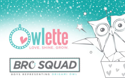 Last Call for Youth Council Submissions + Owlette Education Award Submissions Open January 1
